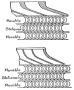 etext:a:a-russell-bond-mechanics-ill-166.jpg