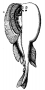 etext:a:ae-dolbear-the-machinery-of-the-universe-104.png