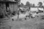 etext:a:alabama-slave-narratives-image239jonesyard.jpg