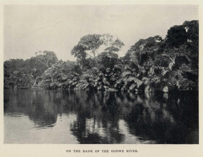 ON THE BANK OF THE OGOWE RIVER.