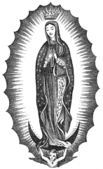 THE VIRGIN OF GUADALUPE.