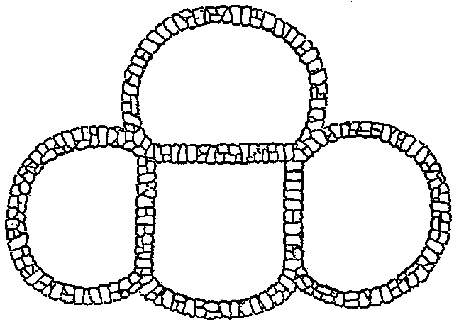 Fig. 494