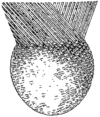 Fig. 515