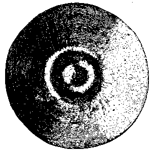 Fig. 535