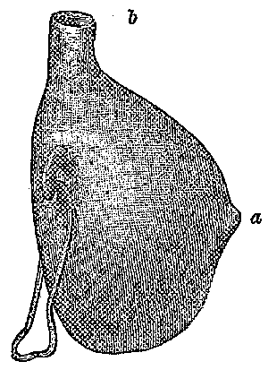 Fig. 549