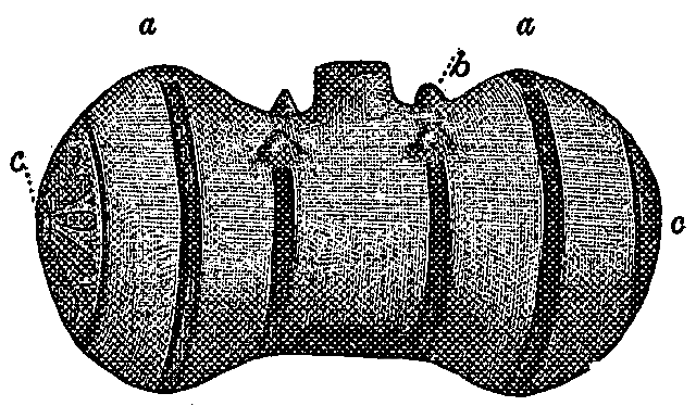 Fig. 550