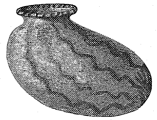 Fig. 562