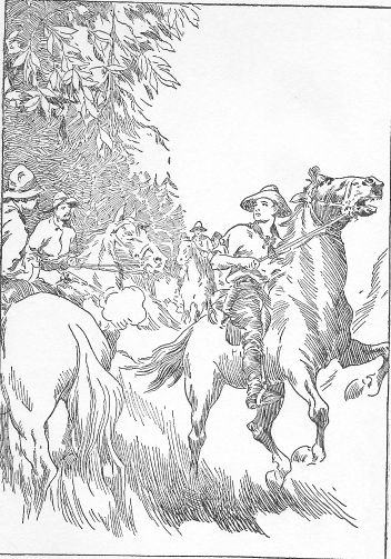 Frontispiece: Tad's Pony Leaped into the Air