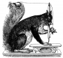 etext:g:grace-cooper-the-invention-of-the-sewing-machine-i118.png