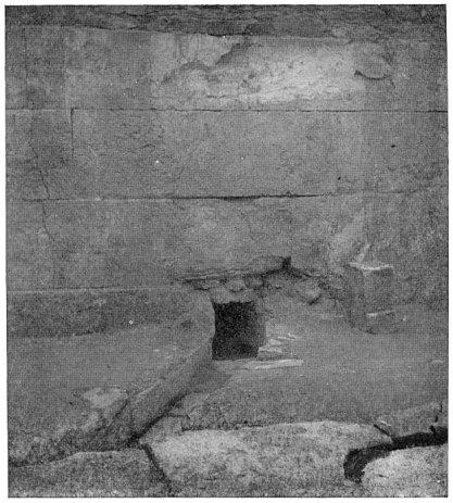 Plate XVI 2
