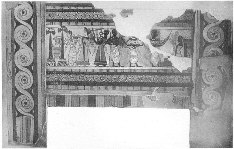 Plate XXVIII