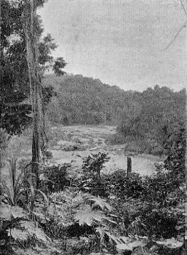 A GUIANA RIVER. THE TUMATAMARI FALLS.
