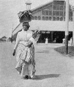 NEGRO WOMAN RETURNING FROM MARKET.