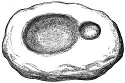 Fig. 186.—Lamp of Sandstone from Broch of Kettleburn.