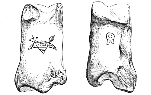 Fig. 243.—Metatarsal Bone of Ox (front and back views), with incised symbols, from Broch of Burrian (actual size).