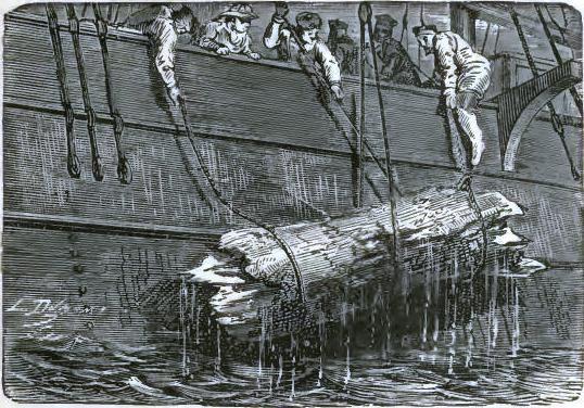 Hoisting the wood aboard