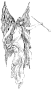 etext:m:me-anderson-the-goblins-christmas-img03.png