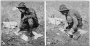 etext:s:stanley-young-hints-on-bobcat-trapping-page_4.png