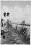 etext:t:texas-slave-narratives-part-1-281careydavenport.png
