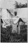 etext:t:texas-slave-narratives-part-2-162060v.png