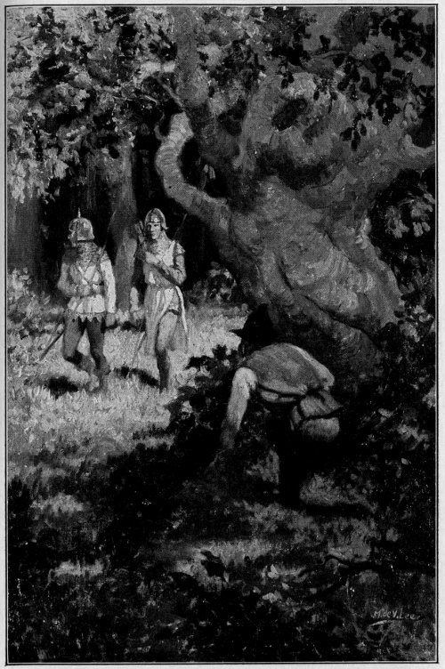They Came Into View From Among the Thick Trunks