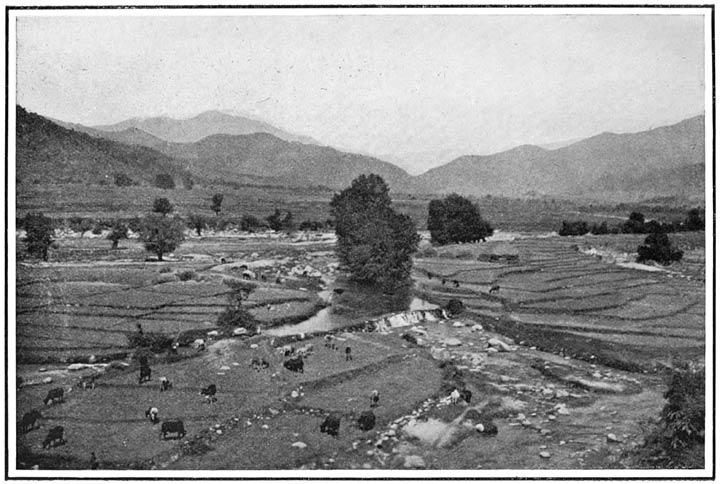 Near Shinkiari, Hazara District
