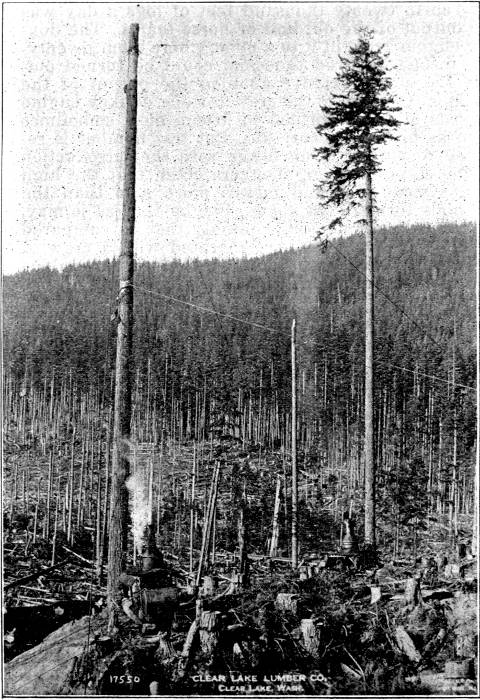 The Flying Machine as now used in Western logging.