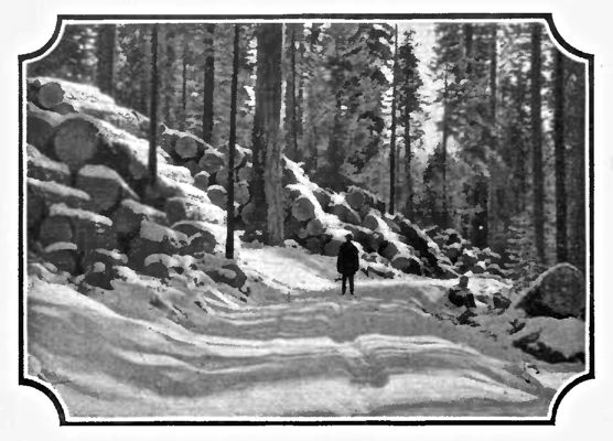 Logging Road near Westwood, California. White Pine and Old Fashioned Winters made Paul Bunyan feel at home.