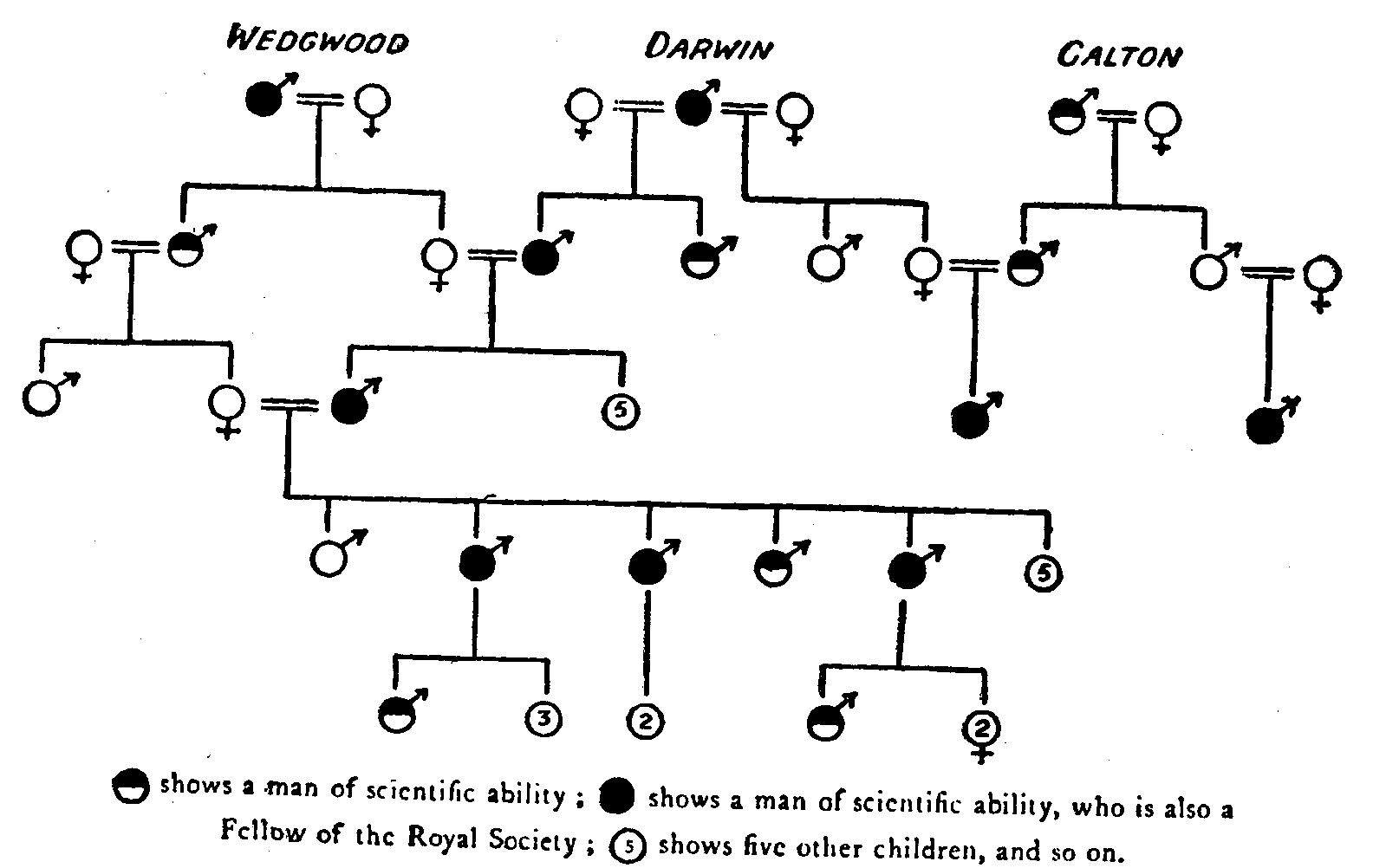 Fig. 28.