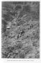 etext:z:zane-grey-tales-of-lonely-trails-zg019_m.jpg