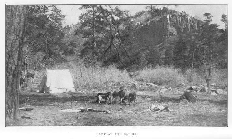 Camp at the Saddle