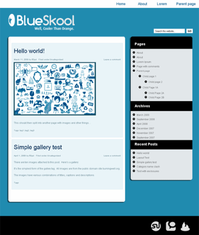 BlueSkool WordPress Theme