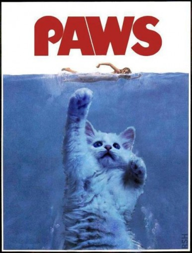 Parody of Jaws movie poster featuring a cat