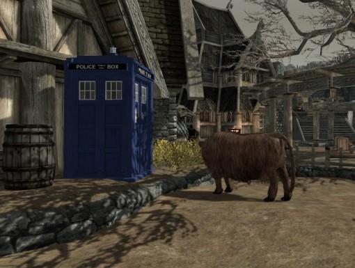 Skyrim TARDIS Mod