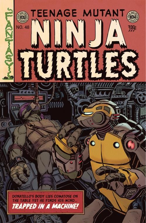 Teenage Mutant Ninja Turtles #48 Cover