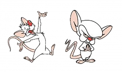Pinky and the Brain Lapel Pin Set