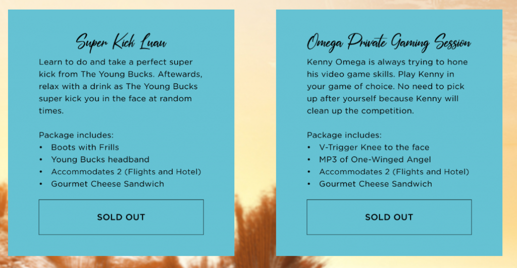 Fyter Fest Special Packages