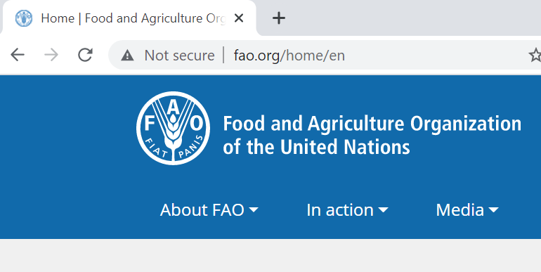 Food and Agriculture Organization of the United States